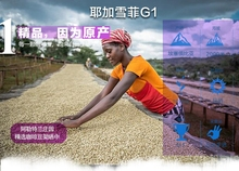 Selected Excellent 227g Ethiopia Yirgaacheffe G1 Coffee Beans Baking Medium roasted Original green food slimming lose