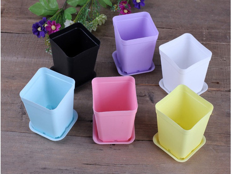 1 Cheap mini plastic flower pot bonsai Planter pots Home Garden supplies WITH 3 bags seeds gift - PUREEASY Store store