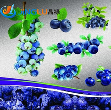 Big Promtion .100 Top Hat Blueberry Bush Seeds ,great Diy Home Container Bonsai Rich In Anthocyanin(China (Mainland))