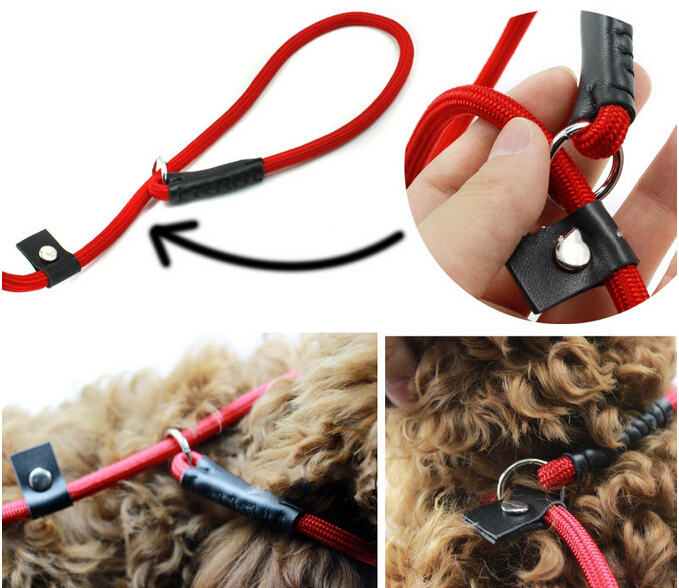New Pet Tow Rope Harness Adjustable Dog Chain Leash Retractable Dog Collar for Big Small Dog Black/Blue/Red long 140cm #5(China (Mainland))