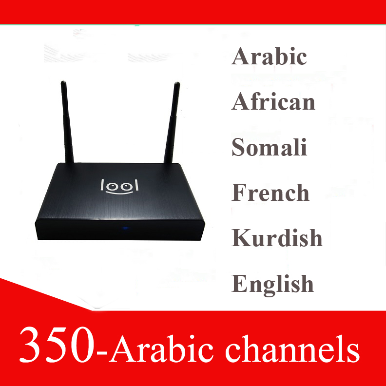 support skype iptv box arabic channels(China (Mainland))