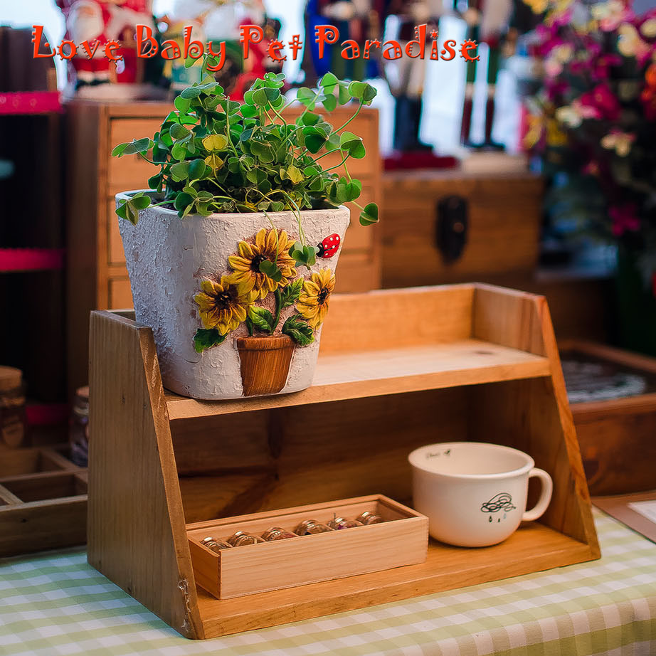High Quality Home Decoration Two-tier system Wooden Miscellaneously Sundries Tool Flower Vase Storage Box Wood for Plants(China (Mainland))