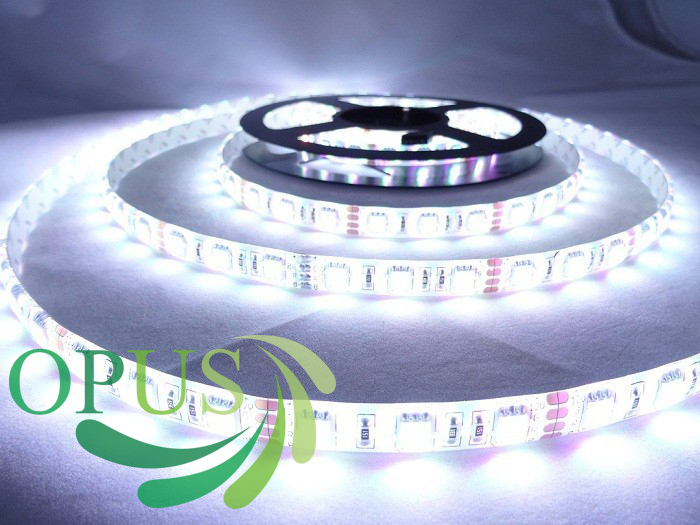 Free shipping 5M 60leds/ M Cool White /Warmwhite /Blue Non-Waterproof 300 LEDs 3528 SMD LED Strip Lights 500CM(China (Mainland))