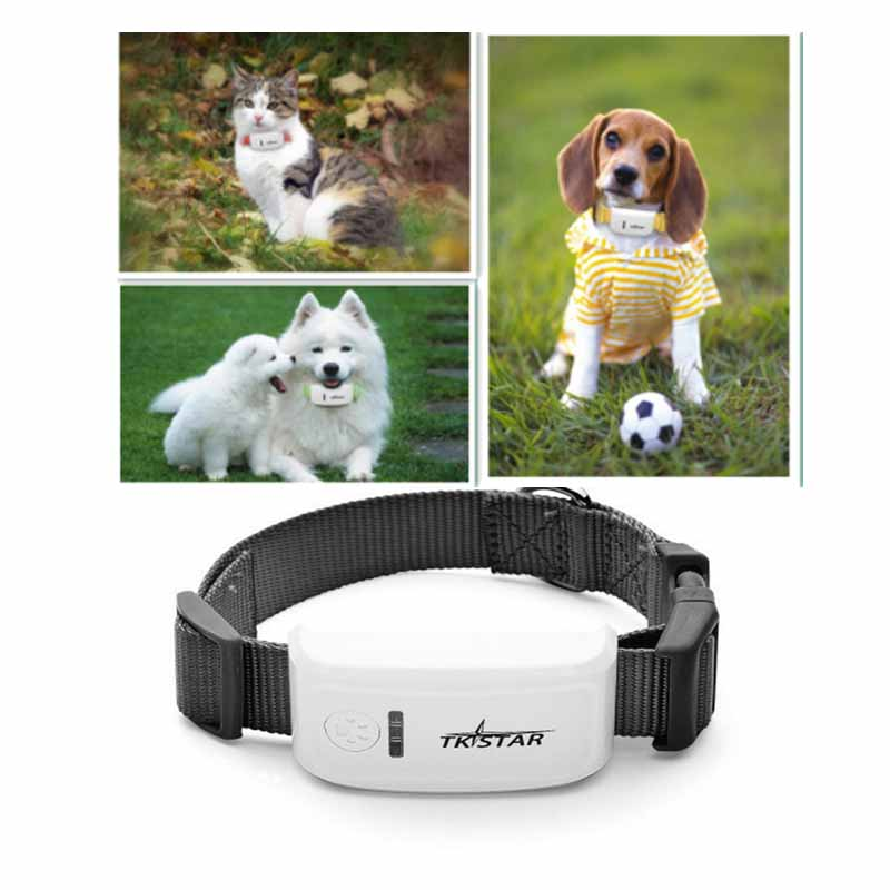 super mini TK909 long standby time dog cat Pet personal gps tracker /IOS /Andriod App free website service free shipping(China (Mainland))