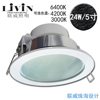 Dimming led paint surface light source led downlight 24w 5