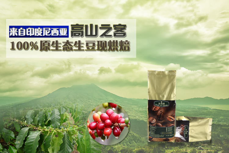 454g Italy Style Coffee Beans High Quality Green Coffee Beans Baking Charcoal Roasted Fresh Black Coffee Powder Free Shipping
