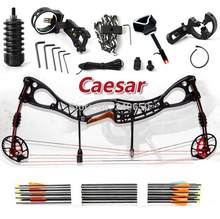 2015 NEW,Caesar, Freeshipping Hunting Bow arrow Set, Caesar Compound Bow,bow And Archery Set