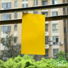 25x15 double face yellow sticky paper for insects eco-friendly green plant yellow armyworm plate insect prevention(China (Mainland))