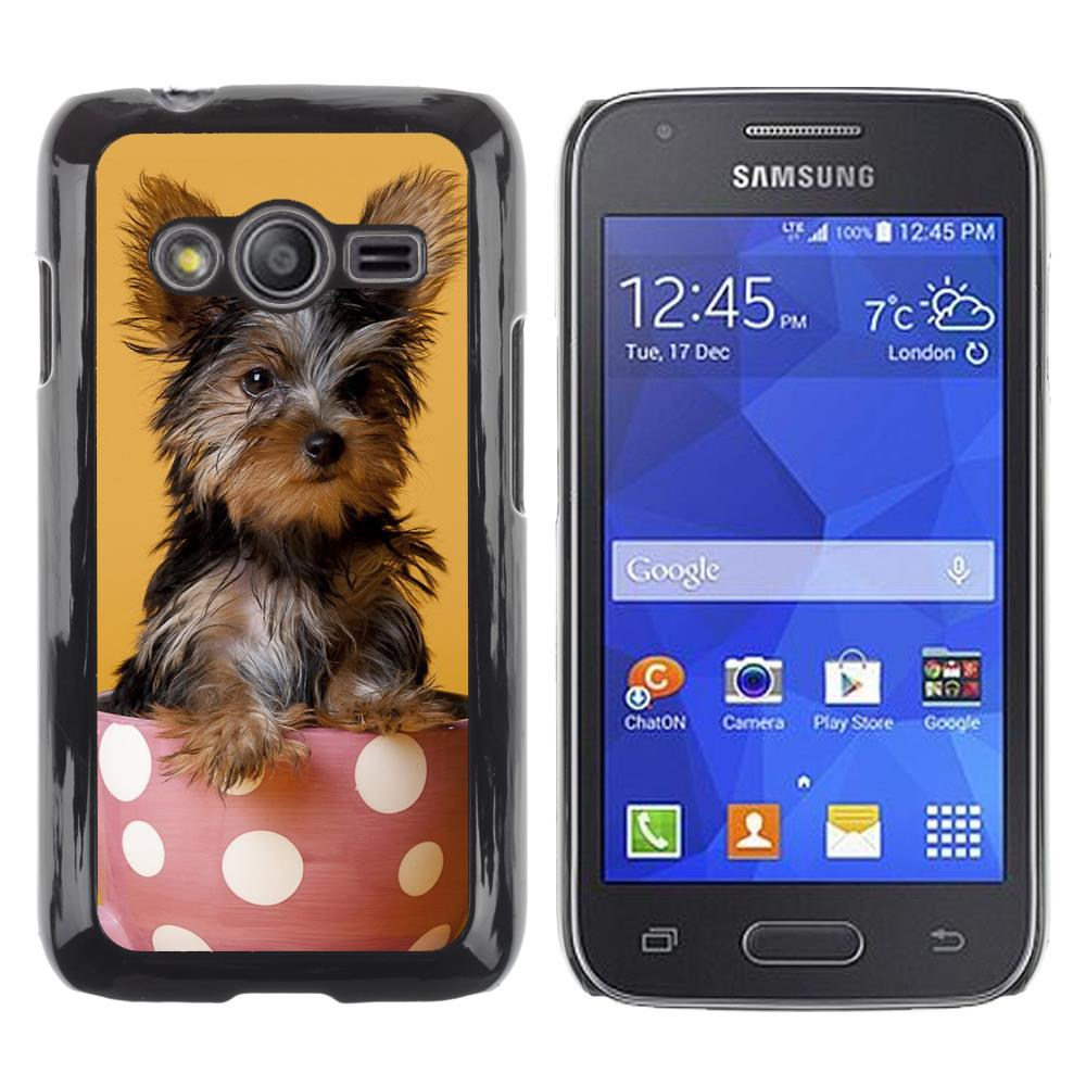 Snap On Hard PC Back Shell Case For Samsung Galaxy Ace 4 G313 SM-G313F-Yorkshire Terrier Dog Cairn Breed(ACE4-3005302)(China (Mainland))
