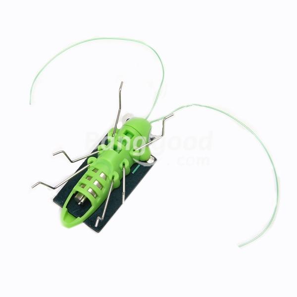 Pskov Educational Solar powered Grasshopper Toy Gadget(China (Mainland))