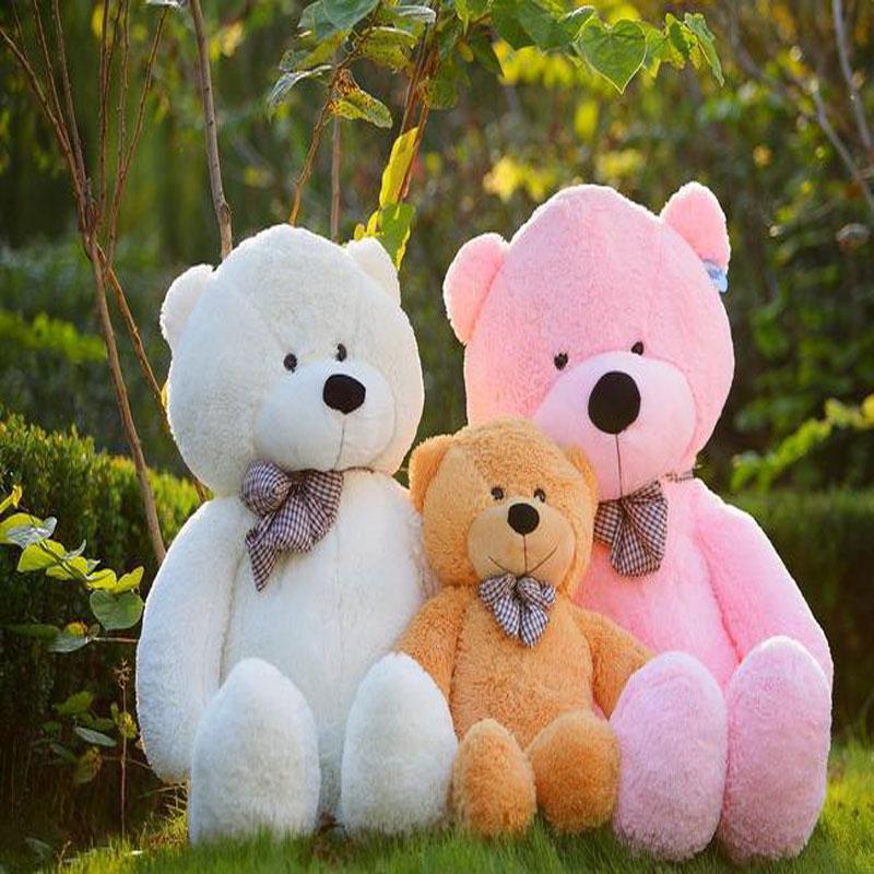 Manufacturers selling teddy bear plush toy doll Karena 80cm big hug the bear three color optional wholesale(China (Mainland))
