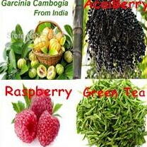 50gram Raspberry Ketone Garcinia Cambogia Green Coffee Bean Tea Acai Berry complex Powder free shipping