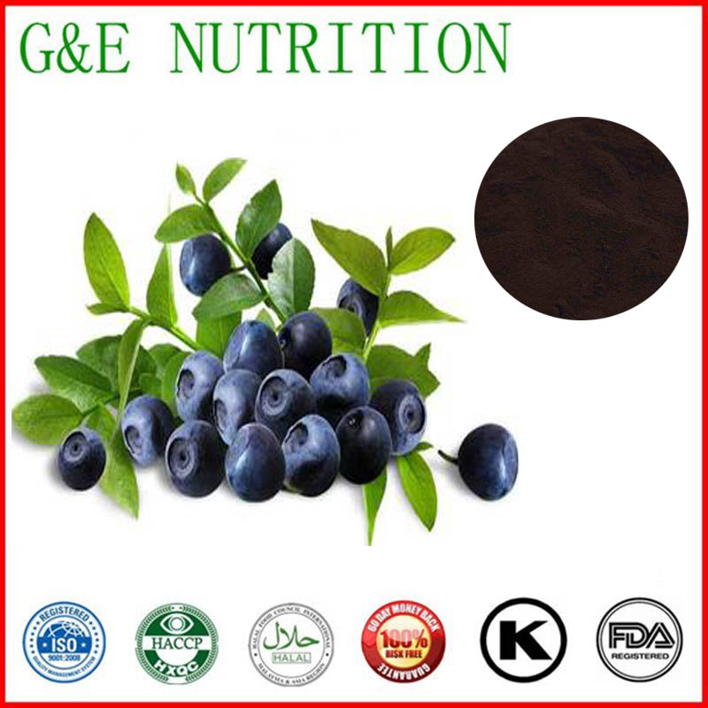 600g Pure Whortleberry/ huckleberry/ cowberry/ blueberry/ bilberryExtract with free shipping<br><br>Aliexpress
