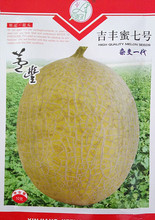 Buy Fruit Seeds Ji Feng Mi Seventh Seeds Hami Melon Melon Seeds White Meat Crisp Sweet Hybrid 10 g / bag for $25.89 in AliExpress store