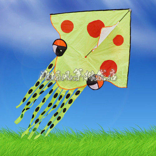 free shipping high quality 10pcs/lot octopus kite easy control with100m handle line children kite fabric ripstop kite factory <br><br>Aliexpress