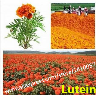 Natural  Lutein 20%  Natural Food Grade Colorant Powder Natural Marigold Flower Extract Food Additives<br><br>Aliexpress