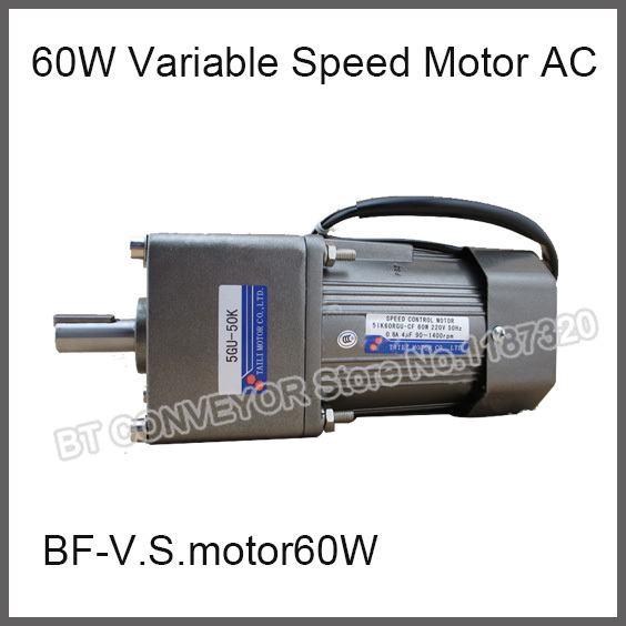 60w Variable Speed Motor Ac 220c Gear Reducer Motor