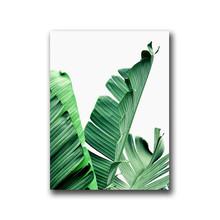 Nordic Groene Plant Canvas Schilderij Muur Foto, tropische Palm Banaan Turtle Leaf Canvas Prints En Poster Wall Art Home Decor(China)