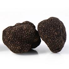500g AAAAA natural and organic dried goods North and South Yunnan wild black truffle songlu wild bacteria truffle mushroom(China (Mainland))