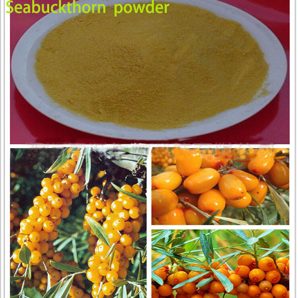 1kg bulk packing best skin whitening DIY mark Anti-inflammatory organic seabuckthorn powder Promote metabolism(China (Mainland))