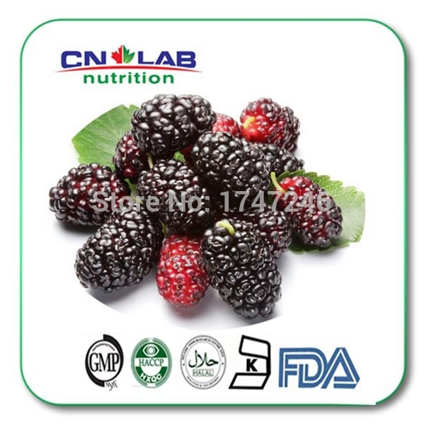 Здесь можно купить  Free Shipping Top Quality Organic mulberry extract powder mulberry powder Mulberry fruit powder  Красота и здоровье