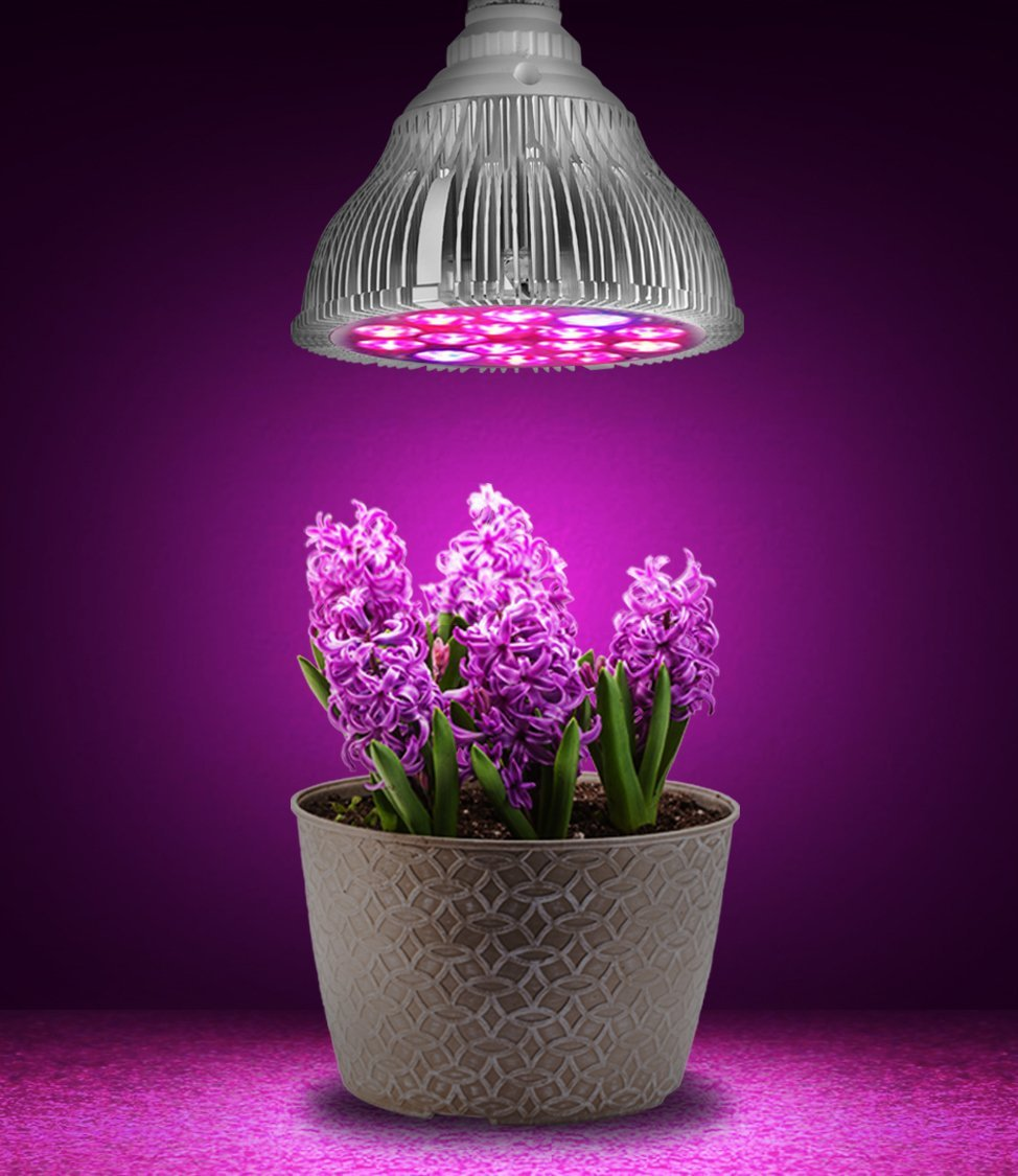 Grow Lights For Indoor Seed 28 Images How To Grow