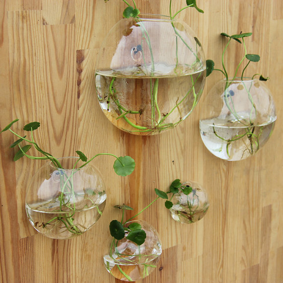 Http Www Aliexpress Com Item 5pcs Set Wall Planter Terrarium Vase Wall Fish Tank For Home Decoration 32383061318 Html