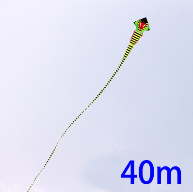 free shipping high quality 40m cobra kite with handle line super snake kite whole kite flying toys parafoil chinese dragon kite(China (Mainland))