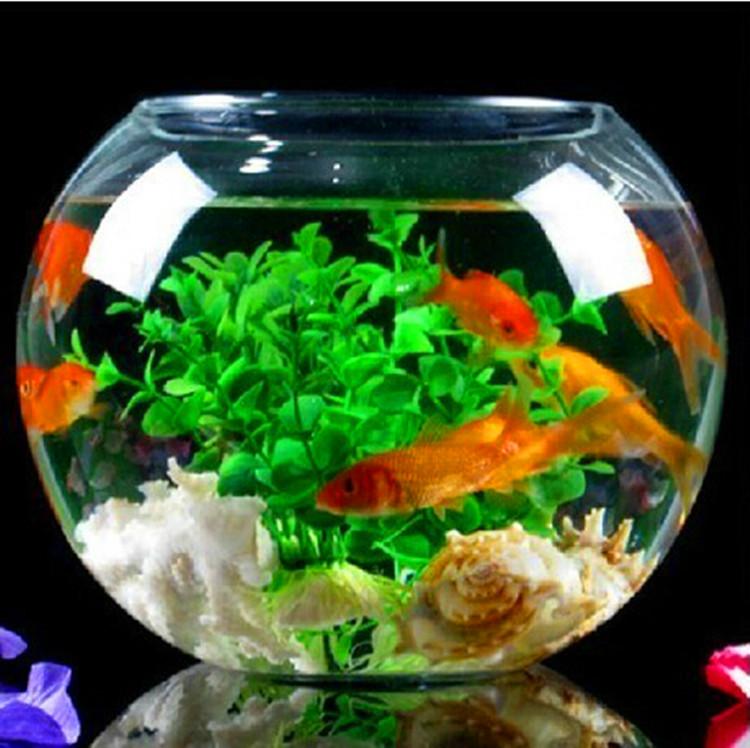 Popular goldfish bowl vase buy cheap goldfish bowl vase for Vase aquarium rond