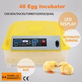 Automatic 48 Egg Incubator for Chicken QUAIL eggs LED Display Turning Time Temperature Alarm hatchery machine Poultry Hatcher