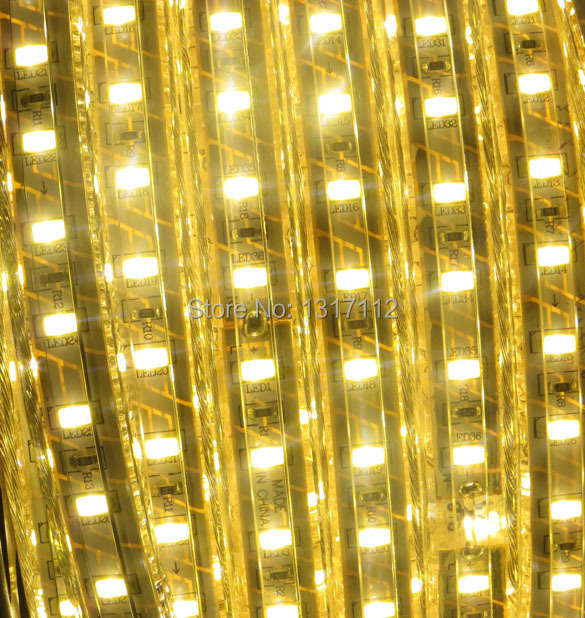Best price!! Newest 100M 5630 LED strip 220V 230V 240V white/warm white Waterproof flexible SMD led strips IP66 + Free Plug(China (Mainland))