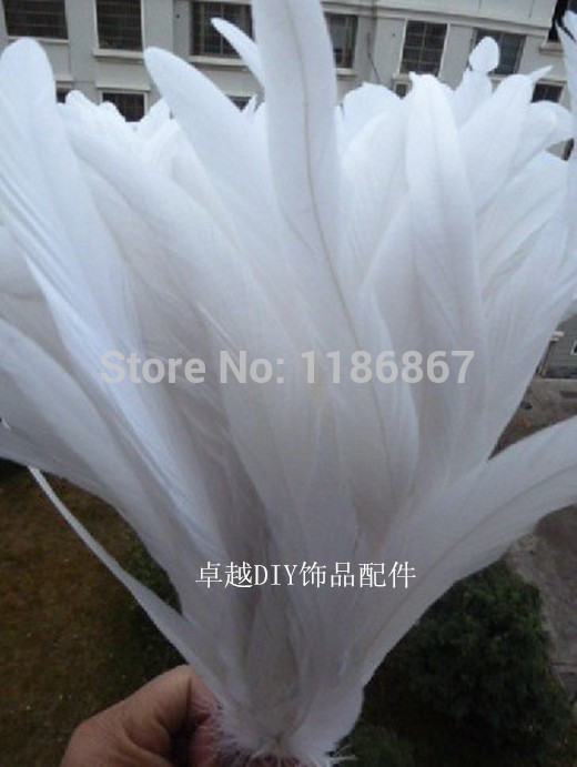 30-35/12-14inch pure white Rooster tail featherFor Costume&Mask Coque Rooster Tail Feathers 100pcs/lot P181(China (Mainland))