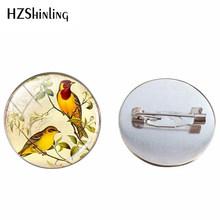 2019 Vintage Red Robin Burung Kaca Dome Pin Bros Retro Burung Perhiasan Hewan Perak Wanita Bros Perhiasan(China)