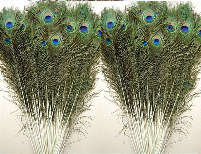 wedding peacock natural feather Wholesale Price! 200pcs/lot, length:25-30 cm,beautiful natural peacock feather!(China (Mainland))