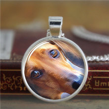 10pcs/lot Daschund necklace,a small dog that has very short legs, a long body, and long ears.necklace print photo necklace(China (Mainland))