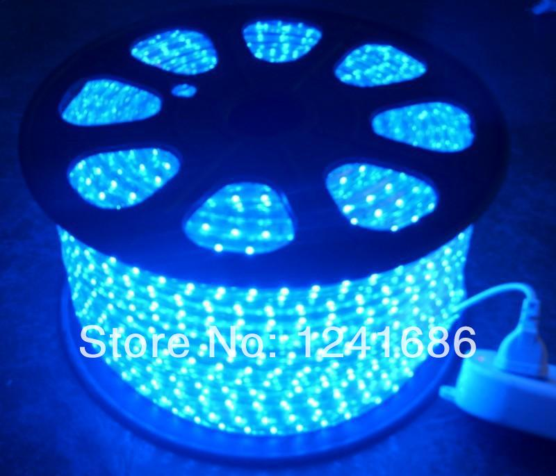 Wholesale100M 5050 LED strip 220V 230V 240V white/warm white Waterproof flexible SMD led strips IP65 + Free Plug(China (Mainland))