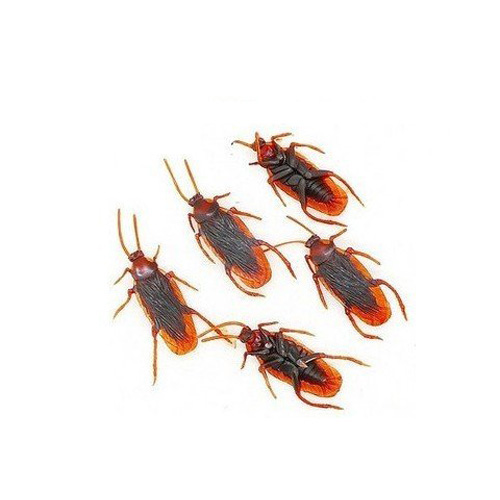 WSFS Hot Sale 10 Fake Roaches Prank Novelty Cockroach Bugs Look Real(China (Mainland))