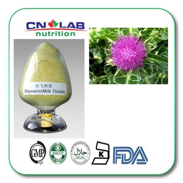 500g/ bag Milk Thistle Extract 80% silymarin UV Brown yellow powder St. Mary Thistle extract(China (Mainland))