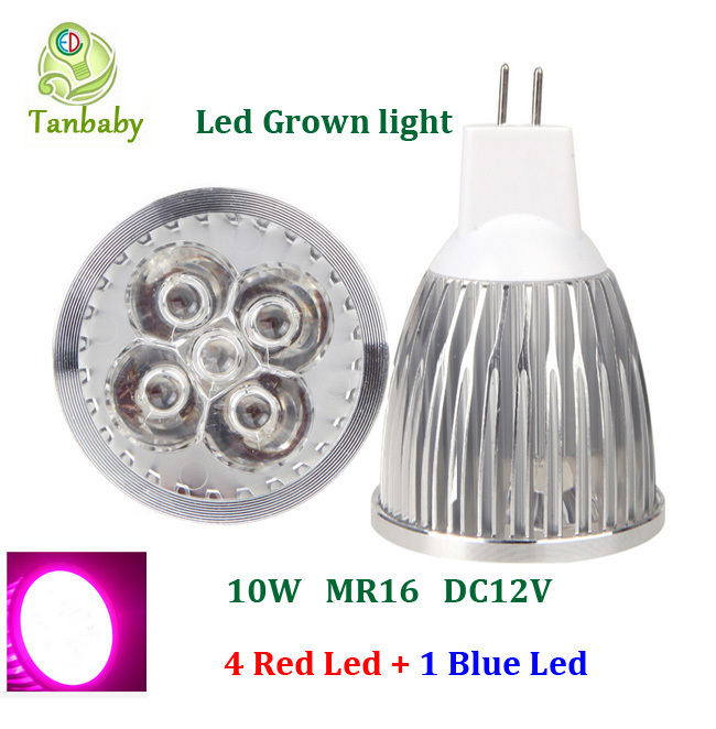Tanbaby 10W led plant grow light 4 Red 1 Blue DC12V MR16 Full spectrum led grow lights Hydroponic Lamp Bulb for Flower Plants<br><br>Aliexpress