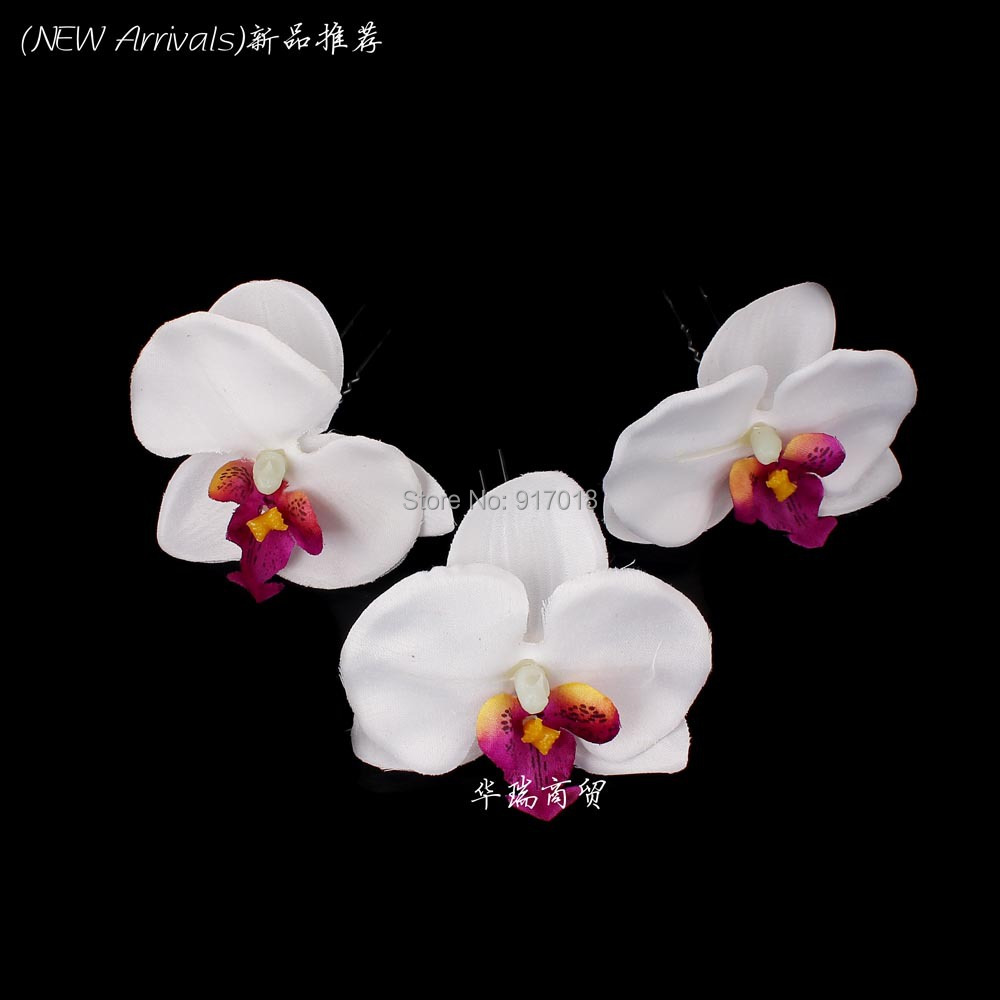 Black Orchid Flower For Sale