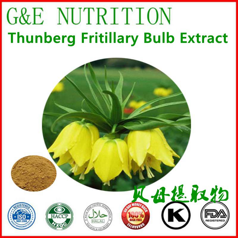 Chinese herb extract Anti-tussive Thunberg Fritillary Bulb 1000g<br>