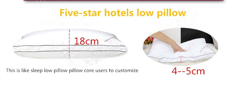 1 Piece Health Care Bed Feather Pillow Cotton Cervical Pillow With Polyester/cotton Pillow-Filling And Silk Pillows Cover cheap
