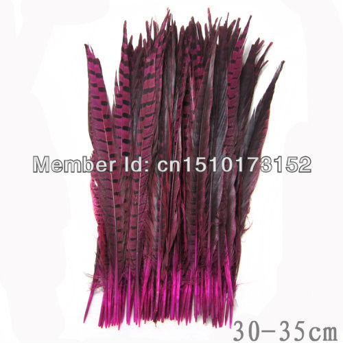 10s Rose Dyed Loose pheasant Tail feathers 12-14inches/30-35cm Craft Supplies OH1-8 - TiTi Feather Market store