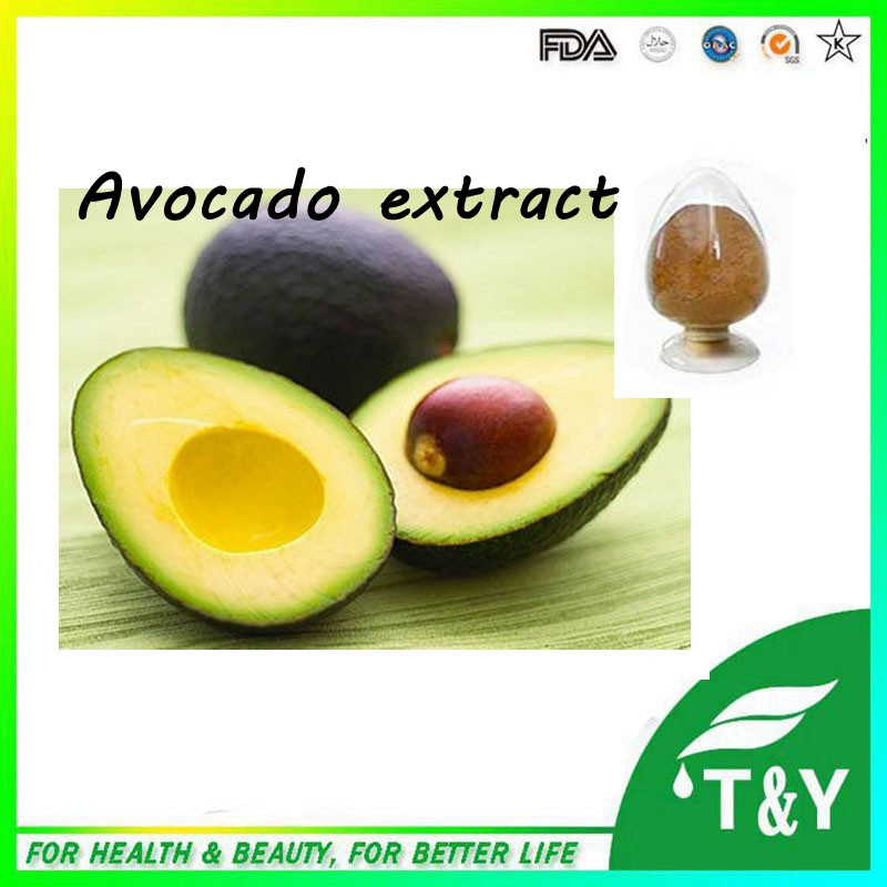Stable Quality 100% nature Avocado Extract/ Phytosterols Powder or 4:1~20:1 300g/lot<br><br>Aliexpress