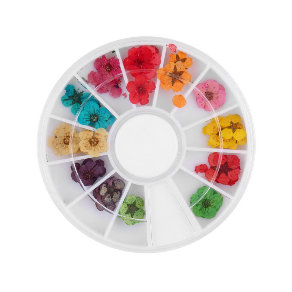 Гаджет  12 Color 36pcs Dried Dry Flower Nail Art Wheel Decoration Manicure Tips None Красота и здоровье