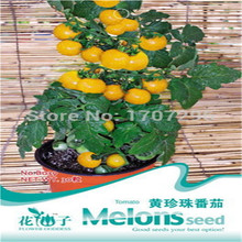 Buy Wholesale Choi bags balcony potted flower seed,Yellow pearl tomato Seeds about 30 particles for $1.56 in AliExpress store