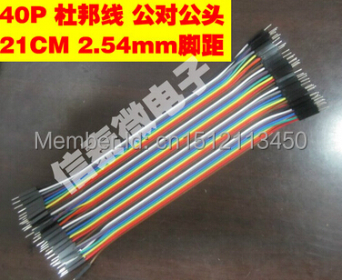 40p dupont line toward the male head length 21 cm 12 strands wire bread plate test line 40 root row(China (Mainland))
