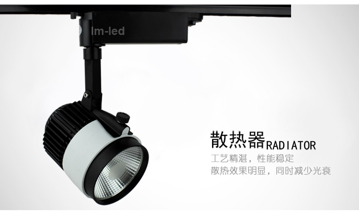 "COB LED track light 20W 110V 220V Rail spot lighting Lamparas Clothing store lights Tiffany"" silver,LED lamp(China (Mainland))"