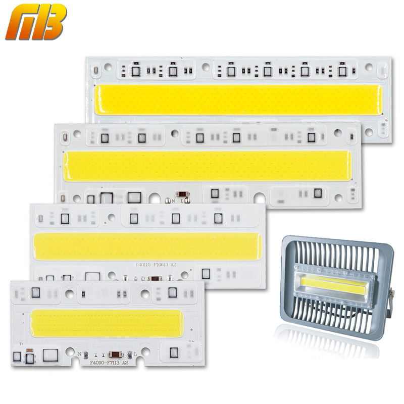 LED COB Bulb Lamp Light 30W 50W 70W 100W 150W 220V Input IP65 Smart IC Fit For DIY LED Flood Light Cold White Warm White(China (Mainland))