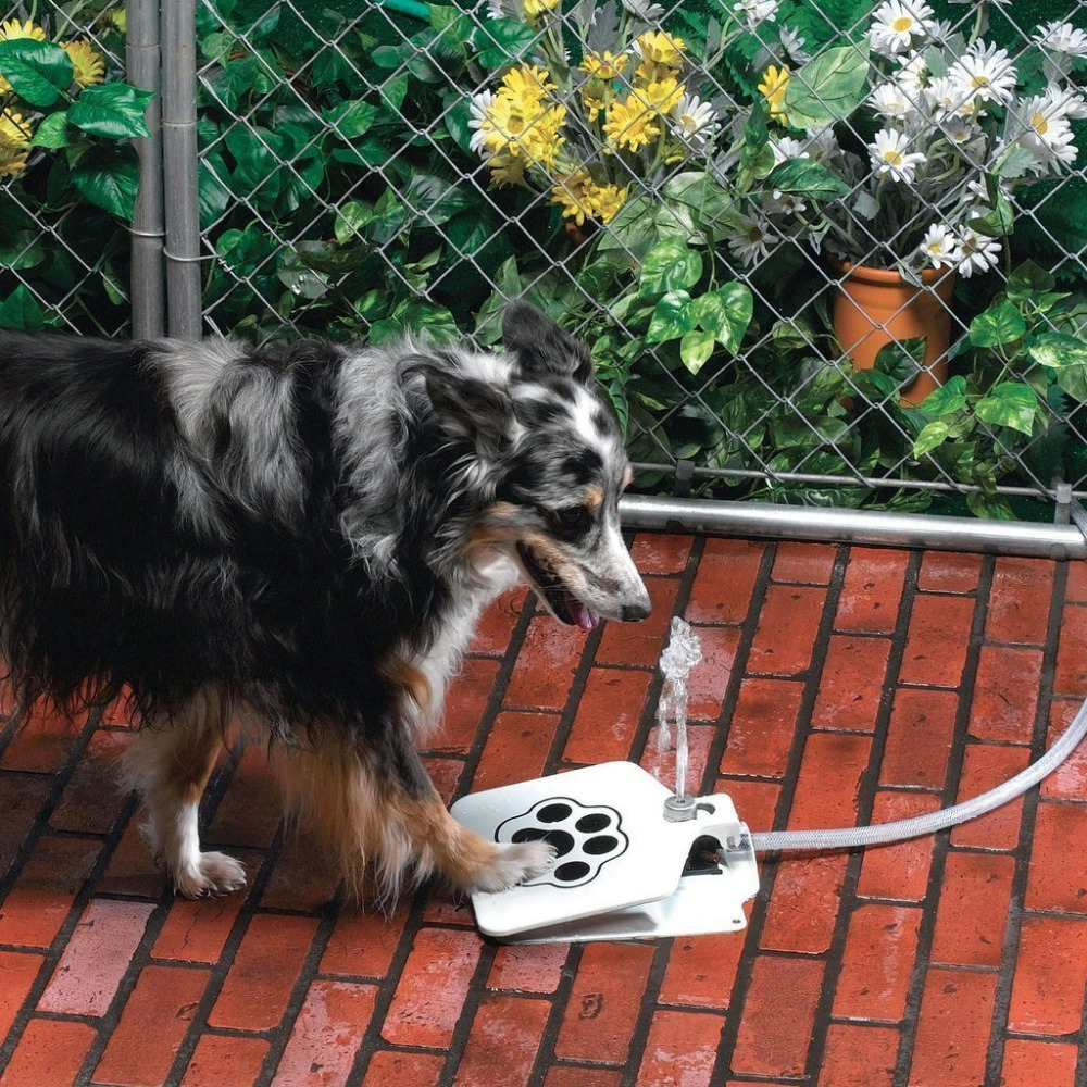 Latest Premium Automatic Dog Waterer Dispenser Feeder Easy to Use Fresh n' Clean Water Always Carefree Ideal for Outdoors(China (Mainland))